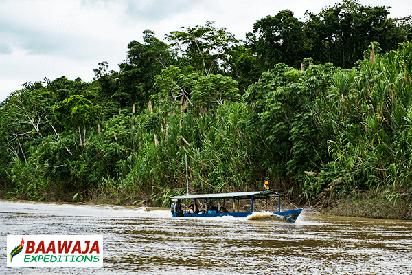 Sailing the Tambopata River